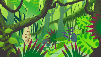 rainforest_1920x1080
